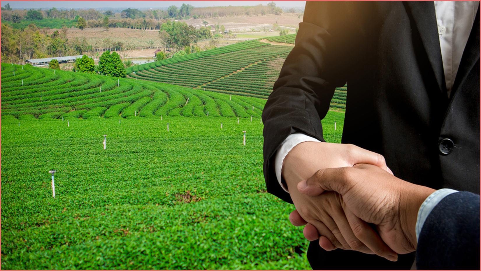 بالتفصيل كل ما تريد معرفته عن الاستثمار الزراعي في تركيا