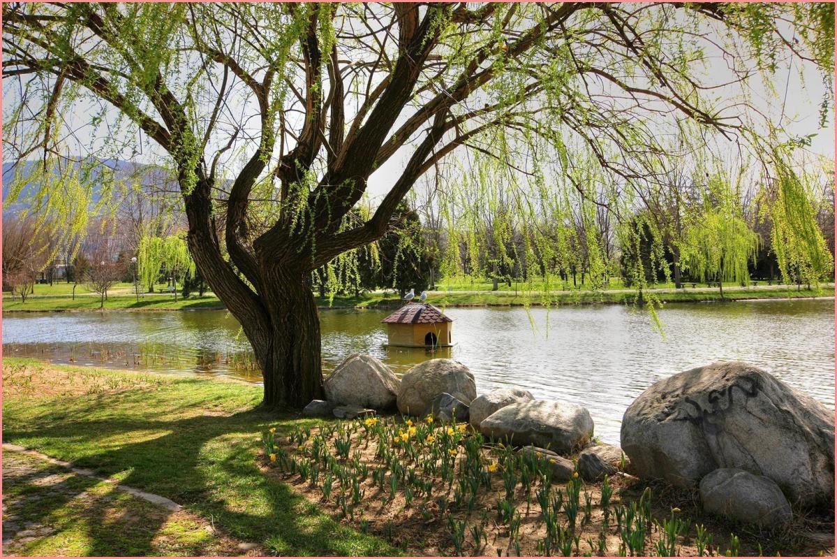 حديقة بوتانيك في مدينة بورصة التركية