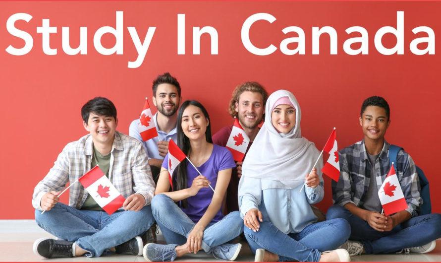 الاوراق المطلوبة للدراسة في كندا للطلاب الدوليين وكيفية استخراج تأشيرة دراسة