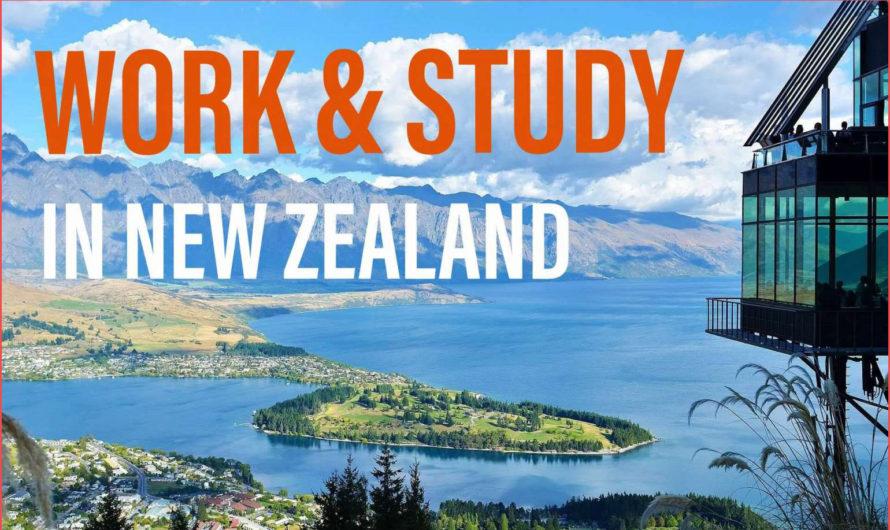 تعرف على فرصالعمل في نيوزيلندا والوظائف المطلوبة هناك