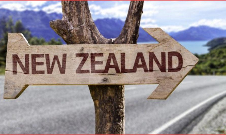 خطوات واجراءات طلب اللجوء في نيوزلندا 2020