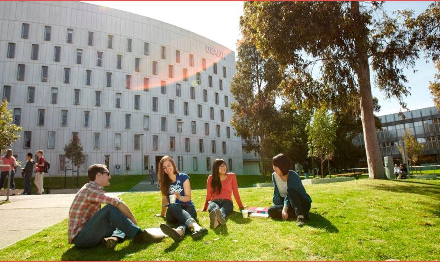 مزايا الدراسة في استراليا وتحقيق فرص الدراسة بالخارج