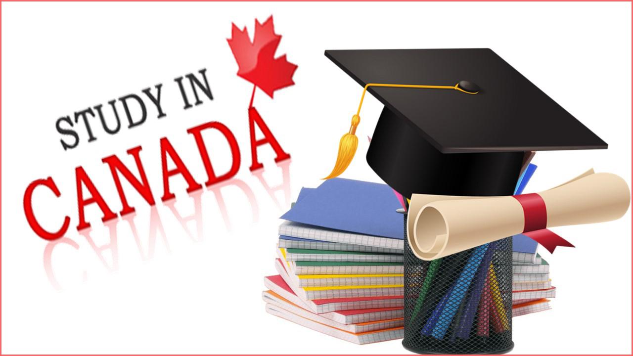 ملف شامل عن تكاليف الدراسة في كندا للمصريين وتكاليف المعيشة فيها