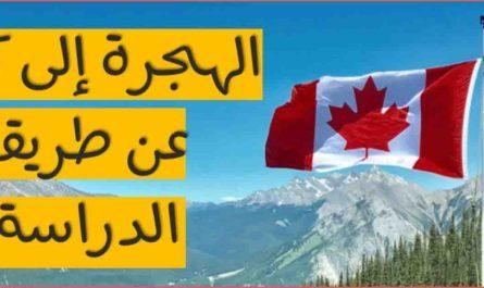 مميزات الهجرة الى كندا عن طريق الدراسة وهل الدراسة في كندا ميزة لإيجاد فرصة عمل هناك