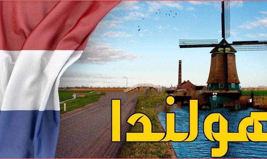 تقديم طلب لجوء الى هولندا عبر الانترنت هذا ما يجب أن تعرفه