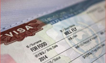 كم تبلغ مدة استخراج التاشيرة من السفارة السعودية