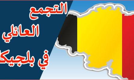 موقع متابعة فيزا لم الشمل بلجيكا.. ما هي الوثائق المطلوبة للحصول على فيزا لم الشمل بلجيكا