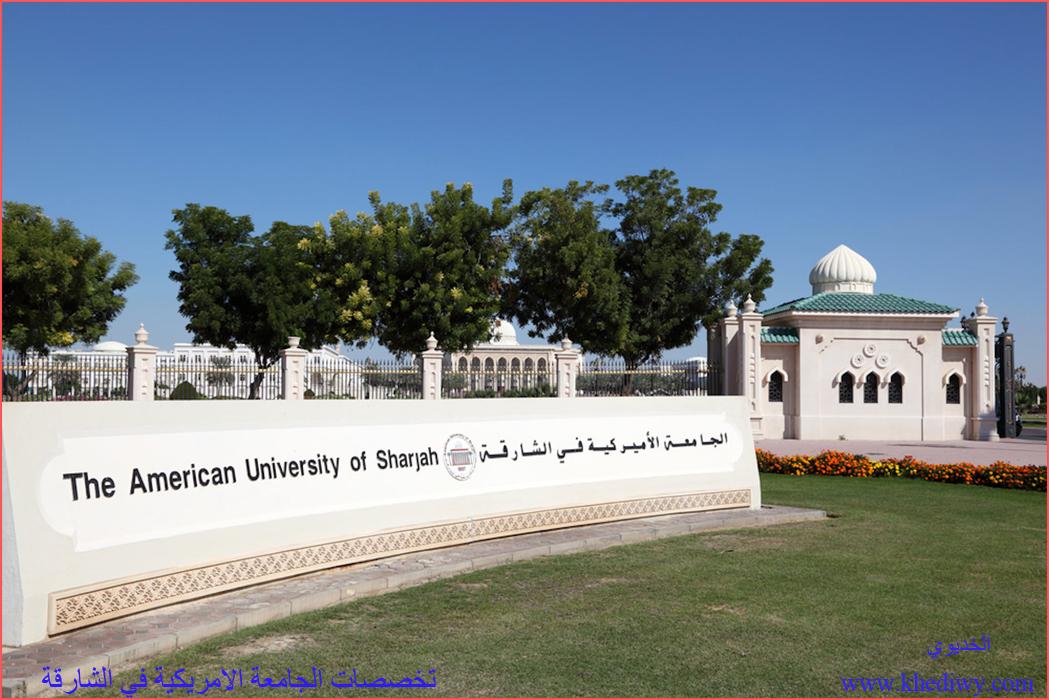 4 من أبرز كليات وتخصصات الجامعة الامريكية في الشارقة تعرف عليها